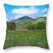 Golden Banner In Horseshoe Park In Rocky Mountain Np-co- Throw Pillow