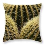 golden barrel cactus Mexico Throw Pillow