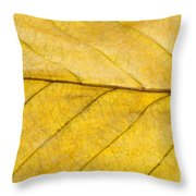 Golden Beech Leaf Throw Pillow