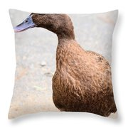 Golden Brown Feathers Throw Pillow