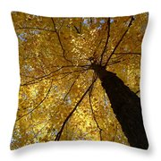 Golden Canopy Throw Pillow