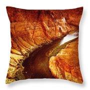 Golden Canyon Throw Pillow
