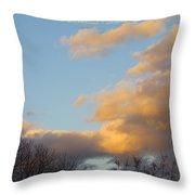 Golden Cascade Throw Pillow