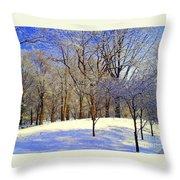 Golden Central Park Throw Pillow