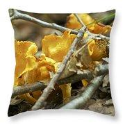 Golden Chanterelle - Cantharellus Cibarius Throw Pillow