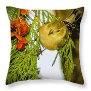Golden Christmas Finch Throw Pillow