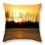 Golden Day Throw Pillow