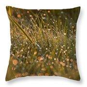 Golden Dew Drops Throw Pillow