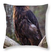 Golden Eagle 2 Throw Pillow