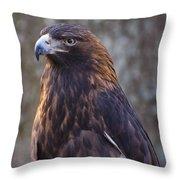 Golden Eagle 3 Throw Pillow