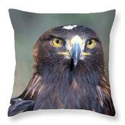 Golden Eagle Lookin' At You Throw Pillow