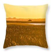Golden End Of Day  Throw Pillow