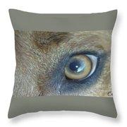 Golden Eye Of Norbu 12 18 2011 Throw Pillow