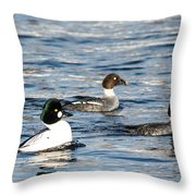 Golden-eyed Ducks Throw Pillow
