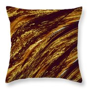 Golden Falls Throw Pillow