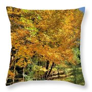 Golden Fenceline Throw Pillow