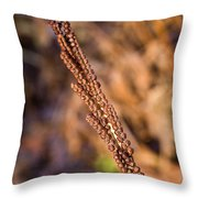 Golden Fern Spore Stem 6 Throw Pillow