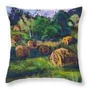Golden Fields Of Door County Throw Pillow