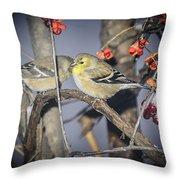 Golden Finch Cold Shoulder Throw Pillow