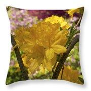 Golden Glory - Azalea Throw Pillow