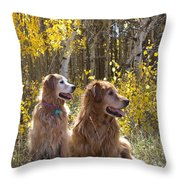 Golden Goldens - Golden Retriever Brothers - Casper Mountain - Casper Wyoming Throw Pillow