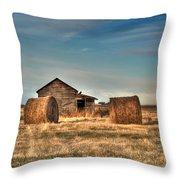 Golden Hay Throw Pillow by Lisa Knechtel