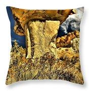 Golden Hoodoo Throw Pillow