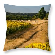 Golden Hour On Country Road Throw Pillow