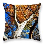 Golden Leaves II Throw Pillow