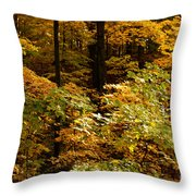 Golden Leaves In Autumn Throw Pillow