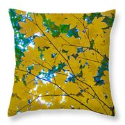 Golden Leaves Of Autumn Throw Pillow