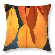 Golden Leaves With Golden Sunshine Shining Through Them Throw Pillow