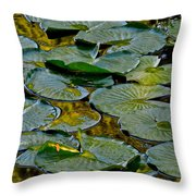 Golden Lilly Pads Throw Pillow