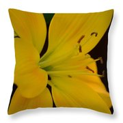 Golden Lily Glow Throw Pillow