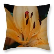 Golden Lily Throw Pillow