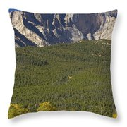 Golden Longs Peak View Throw Pillow