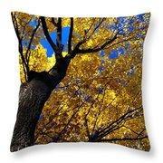 Golden Maple 7 Throw Pillow
