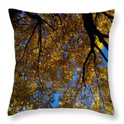 Golden Maple 8 Throw Pillow