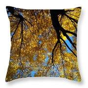 Golden Maple 9 Throw Pillow