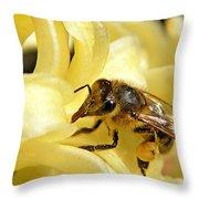 Golden Nectar  Throw Pillow