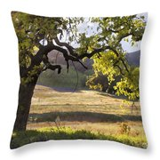 Golden Oaks Throw Pillow by Sharon Foster
