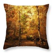 Golden Path Throw Pillow