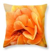 Golden Peach Rose Throw Pillow