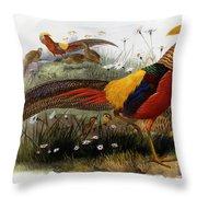 Golden Pheasants Throw Pillow
