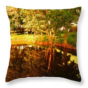 Golden Pond 4 Throw Pillow