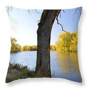 Golden Pond Panorama Throw Pillow