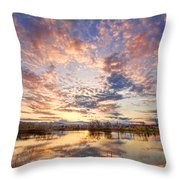 Golden Ponds Scenic Sunset Reflections 4 Throw Pillow