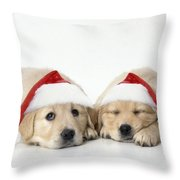 Golden Reriever Puppies, 7 Weeks Old Throw Pillow