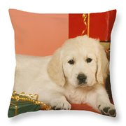 Golden Retriever Amongst Presents Throw Pillow