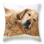 Golden Retriever And Orange Cat Throw Pillow